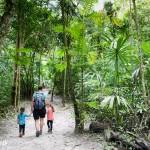 Exploration de la jungle à Tikal.